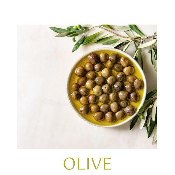 Olivy aolivový olej jsou 2 základní ingredince, bez kterých by italská kuchyně nebyla tou pravou.